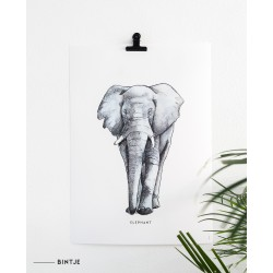 Poster Olifant voor Romana
