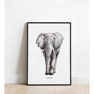 Poster A3 Prent Olifant