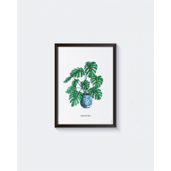 Poster A4 Plant Prent Monstera