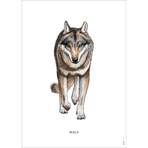 Poster Prent Wolf